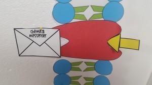 Receptor Protein